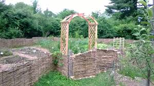 the 16th century renaissance kitchen garden flourishes in second