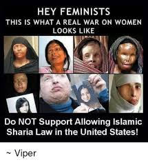 This Is What A Feminist Looks Like Meme - hey feminist this is what a real war on women looks like do not