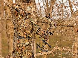 Color Blind Camouflage Test Best Camo Patterns For Where You Hunt
