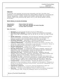 cv standard format resume for sales assistant retail cheap essay editing