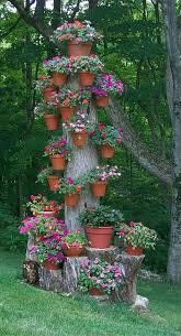 the 15 best images about mi jardin on pinterest gardens a tree