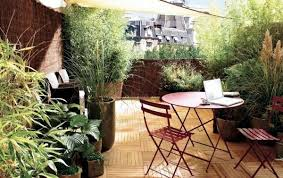 Garden Roof Ideas How To Improve Privacy Of Rooftop Garden Rooftop Garden Ideas