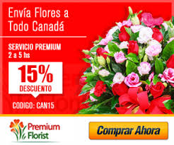 flower delivery coupons flowers delivered coupon codes carnival mexican riviera cruise deals