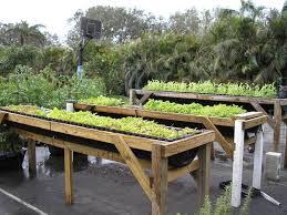 wonderful build raised vegetable garden how to build raised