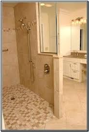 Shower Doors Ebay Showers Without Door Aypapaquerico Info