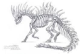 drawn skeleton dragon pencil and in color drawn skeleton dragon