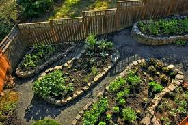 Best Garden Layout Backyard Vegetable Garden Layout Ideas Gardens Designs Home Design