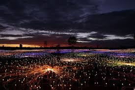 field of light uluru picture monumental art installation at ayers rock resort abc news