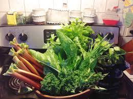 wshg net blog enjoying a year round edible landscape featured