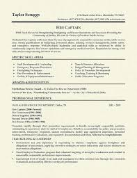 It Professional Sample Resume by Unusual Ideas Design Sample It Resume 13 It Director Sample Resume
