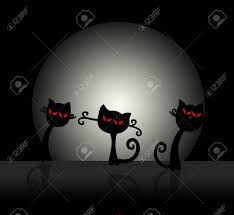 black cat moon concept stock photo picture and royalty