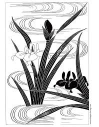 japanese irises a free vintage coloring page