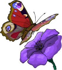 picture of a cartoon butterfly free download clip art free