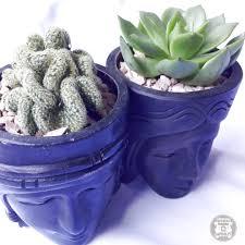 10 reasons why you should own a succulent right now when in manila