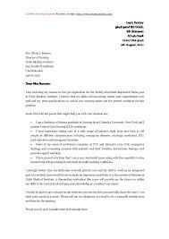 cover letter sample fresh graduate marketing professional