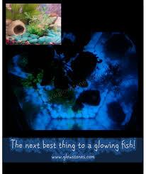 glow in the dark rocks project gallery u2013 glow stones usa