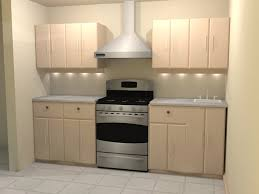 Solid Kitchen Cabinets Kitchen Are Raised Panel Cabinets Dated How To Cover Grooved