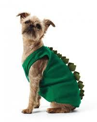 Halloween Costumes Puppies Chia Pet Pet Costume 9 Adorable Diy Halloween Costumes
