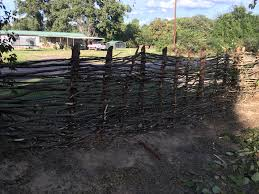 options to replace my fence fencing forum at permies