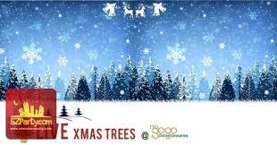 live christmas trees nogogo online groceries nogogo online