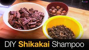 shikakai shampoo hair growth shampoo diy youtube