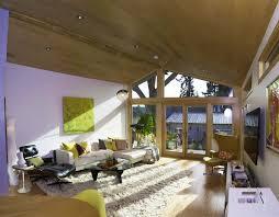 Lime Green Shag Rugs Delightful Green Shag Rug With Wood Walls Wall Paneled