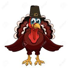 a thanksgiving turkey in a pilgrim hat on white background