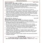 Pl Sql Developer Resume Sample by It Resume Template Inspiredshares Com