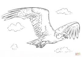 flying osprey coloring page free printable coloring pages