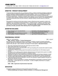 executive resume formats and exles sales executive resume sle resume sle