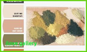 sherwin williams tuscan paint colors picture best home