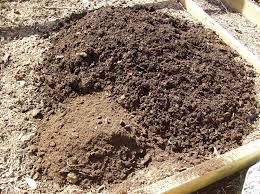 amending your raised bed vegetable garden soil yearly u2013 the