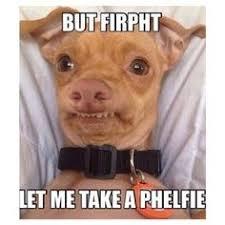 Tuna The Dog Meme - minion pup pfftseven pinterest pup and tuna
