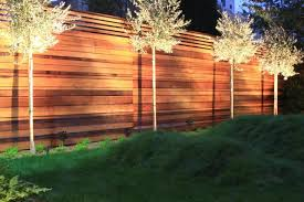 Landscape Up Lights Hardscaping 101 Landscape Uplighting Gardenista