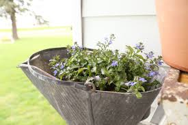 Galvanized Containers For Gardening Adding Color To The Farmhouse Front Porch With Plants