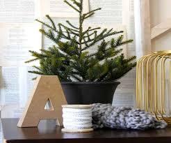 black friday christmas trees at target christmas trees target christmas lights decoration