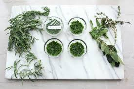 kitchen herbs making herb paste an easy way to preserve fresh herbs