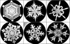 bentley snow snowflake history snowcrystals com