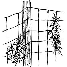 amazon com luster leaf 869 vine and veggie trellis net green 5