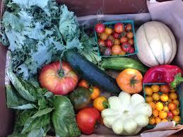 Winter Garden Produce Purchase Food From Sfh Gardens Sunflower Hill