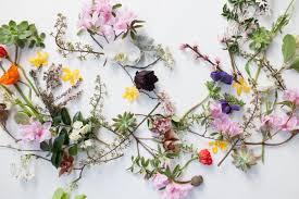 preserving flowers preserving flowers jardines newcastle floral design