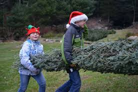 doag pick your own christmas tree by county