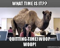 Quitting Meme - what time is it quitting time woop woop hump day camel make