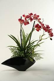 548 best orchids u0026 orchids images on pinterest plants