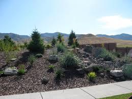 desert backyard landscaping ideas amazing front yard desert