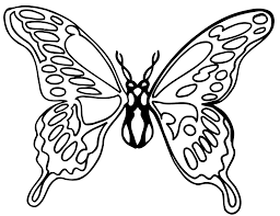 best butterfly clipart black and white 15163 clipartion com