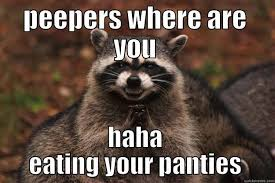 Memes About English Class - evil plotting raccoon memes quickmeme