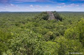 Map Of Yucatan Mexico by Deep In The Jungle Puerta Calakmul Yucatan Mexico Travel 4