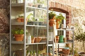 browse plant organization on the organized home