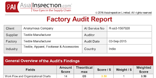 template for audit report audit report template fieldstation co